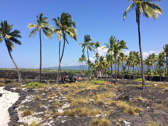 Honaunau, Hawái: the trail along the park