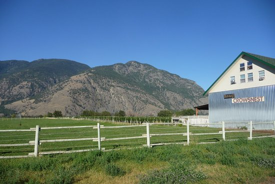Cawston, Canada: Crowsnest Winery.