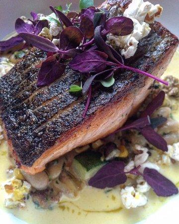 Slingerlands, NY: Salmon with sweet corn emulsion and popcorn