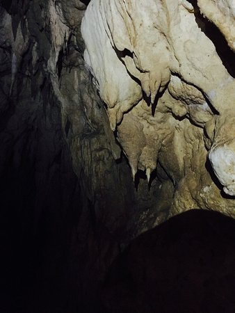 Waitomo Glowworm Caves: photo0.jpg