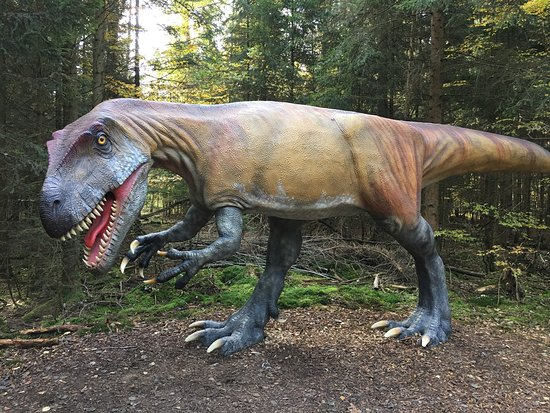 Dinosaurier Museum Altmühltal