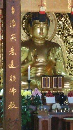 Chuson-ji Temple: DSC_1935_large.jpg