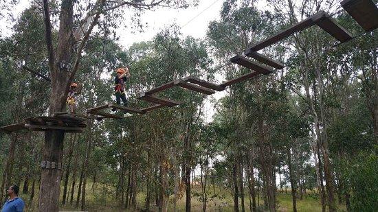 TreeTop Adventure Park Western Sydney: 9349_large.jpg