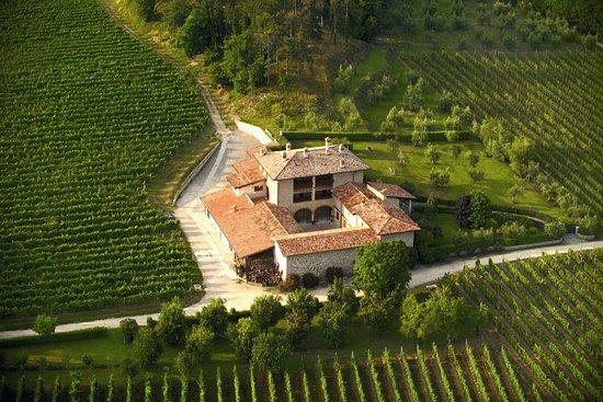 Azienda Agricola Masserino