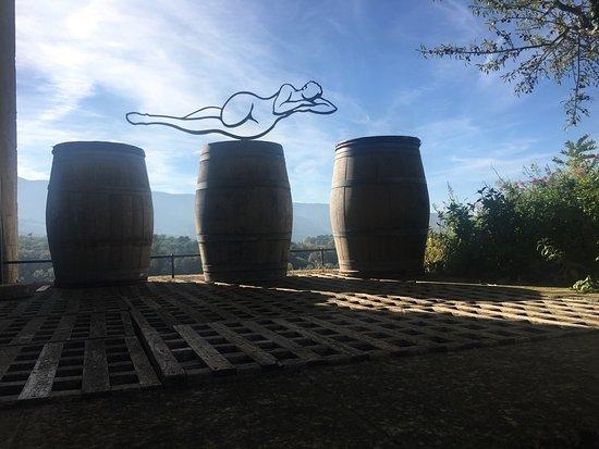 maison de la truffe et du vin du luberon foto maison de la truffe et du vin du luberon