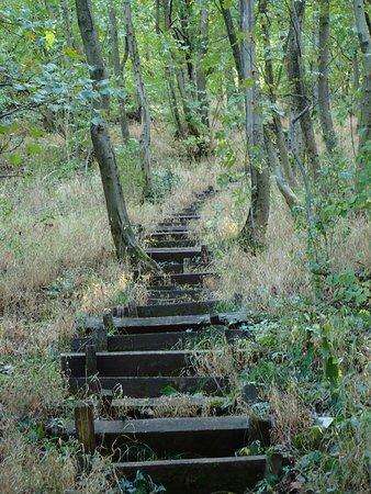 Hegyesd, Ungarn: more stairs