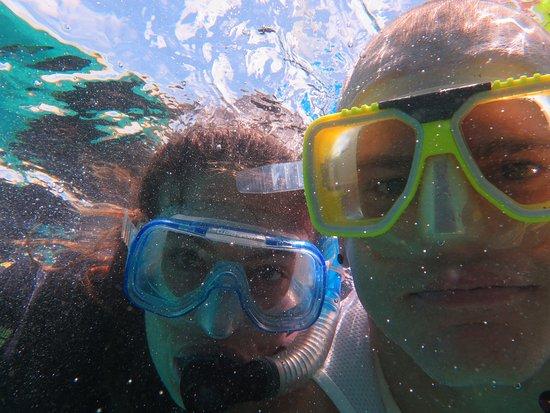 Reef Daytripper: IMG_2364_large.jpg
