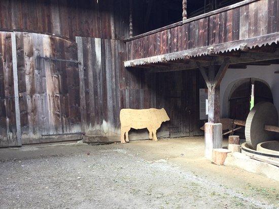 Styria, Østerrike: Livestock
