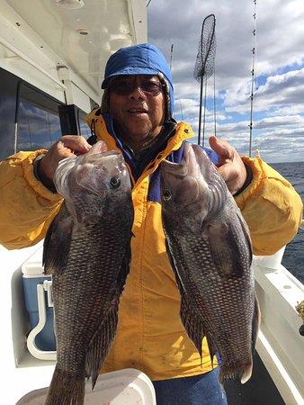 Captain Lou Fleet: Offshore Seabass Cod Ling Trip October 29 2016