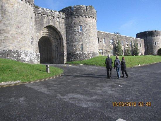 County Limerick, Ireland: grounds