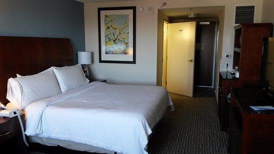 hilton garden inn denver downtown photo - Hilton Garden Inn Denver Downtown