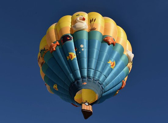 Windsor, CO: Our newest balloon: Pondemonium!