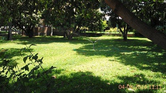 Landscape - Picture of Heritage Resort Hampi - Tripadvisor