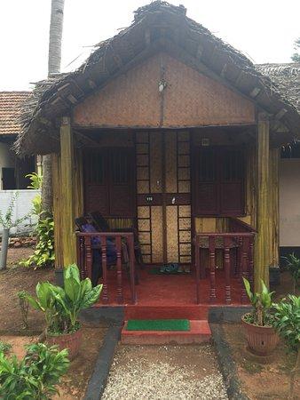 Bamboo Village: photo2.jpg