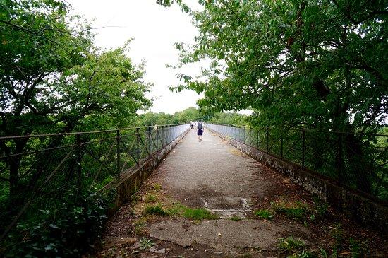 Saint-Georges-le-Gaultier, France : dernière ligne droite