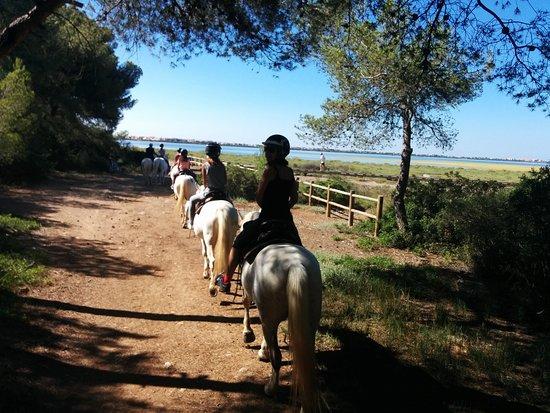 Promenade à Cheval Aresquiers