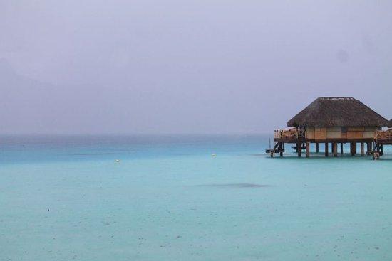 Bora Bora Pearl Beach Resort  TripAdvisor