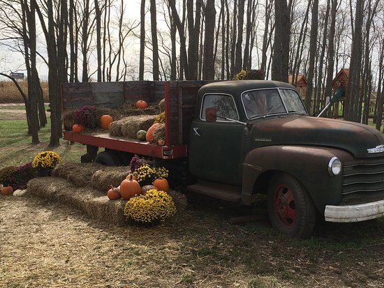 Kearney, MO: Scenes from Fun Farm
