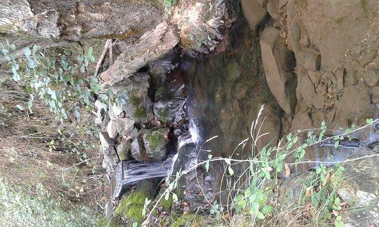Enterria, Spain: 20161101_091853_large.jpg