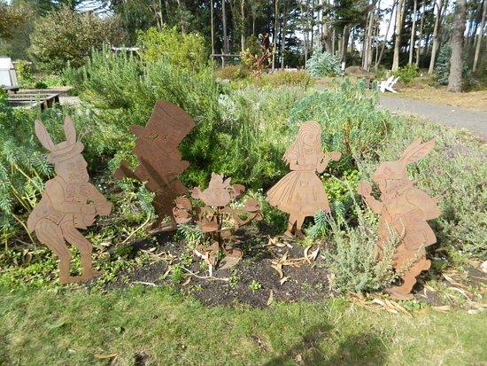 mendocino coast botanical gardens alice in wonderland in farm garden - Alice In Wonderland Garden