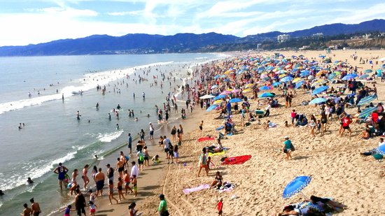 The Liuard Station Picture Of Santa Monica State Beach