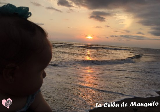 Tonala, Mexico: La Ceiba de Manguito