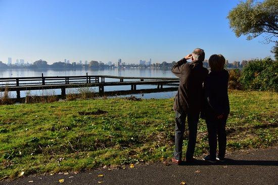 De skyline van Rotterdam gezien vanaf de Kralingse plas - Foto van ...