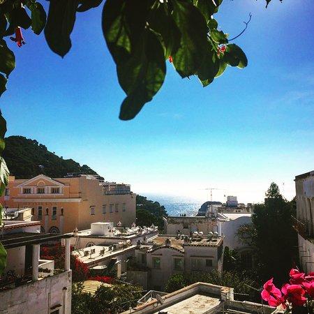 Hotel Gatto Bianco: photo0.jpg