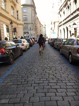 Yellow Zebra Segways & Bikes: riding through streets