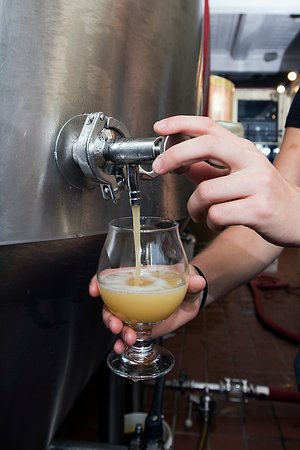 Wilmington, NC: Beer straight from the Fermenter on a Brewery Tour