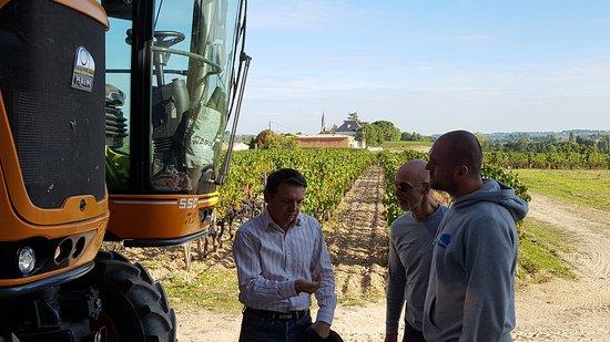 Neac, France: Xavier explains the harvesting process.