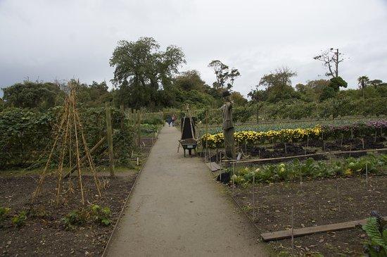 St Austell, UK: Köksträdgården