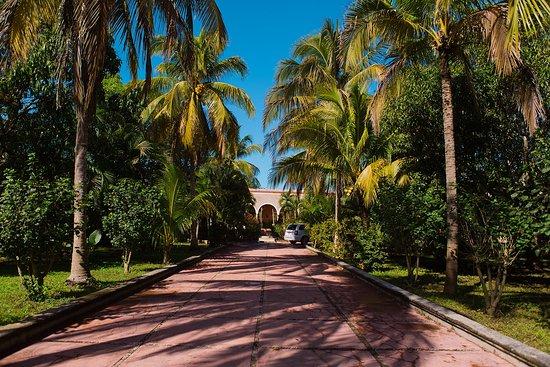 Hacienda Sacnicte Photo
