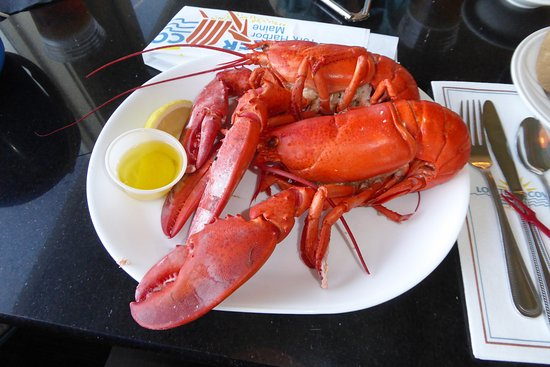 York, ME: Twin-Lobster-special