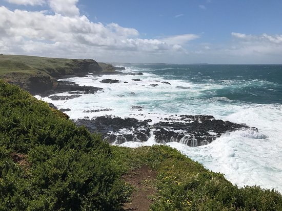 Phillip Island, Australia: Views from The Nobbies boardwalks. They provided a great way to move around and see the coastlin