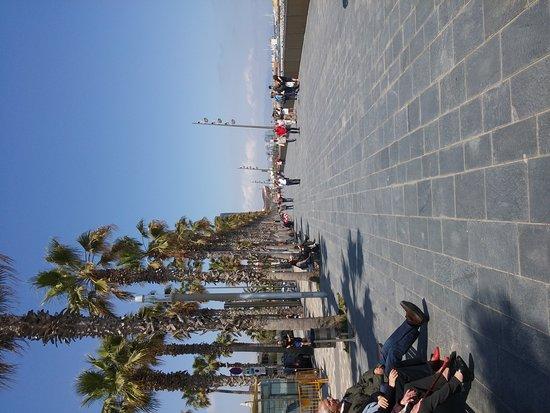 Hotel California: Hotel California