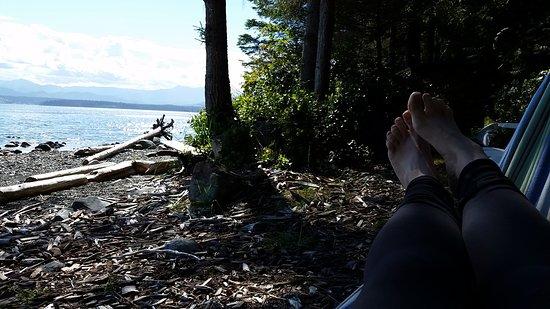 Malcolm Island, كندا: 20160903_152356_large.jpg
