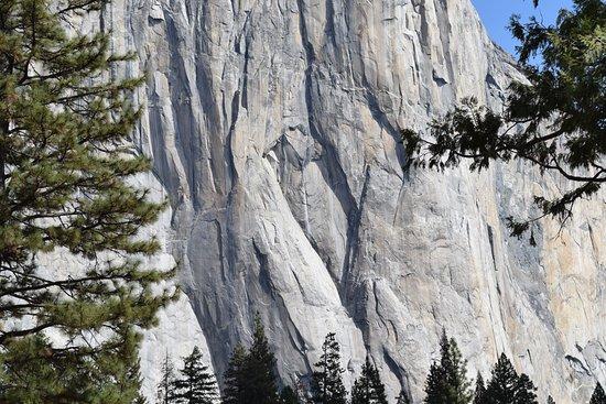 Oakhurst, CA: Look close - climbers on El Capitan.