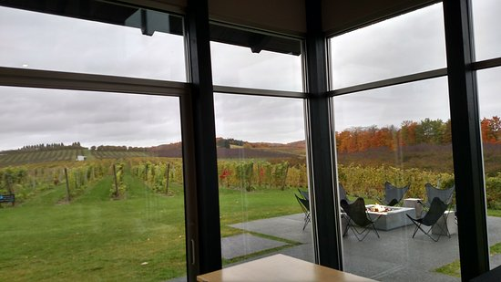 Lake Leelanau, MI: view from inside the tasting room