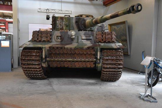 Munster, Germany: Tiger