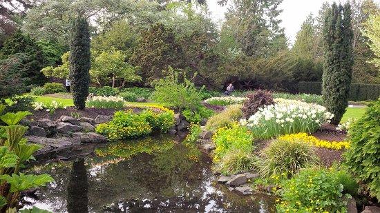 Seasons in the Park: Mt. Elizabeth Park