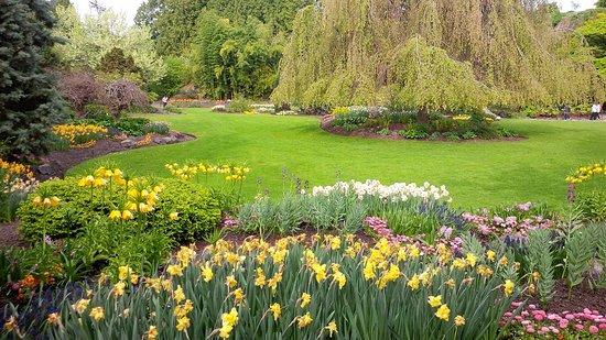 Seasons in the Park照片