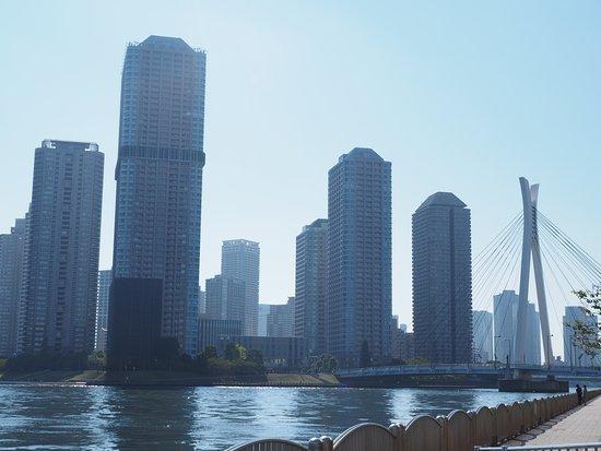 Shinkawa Park