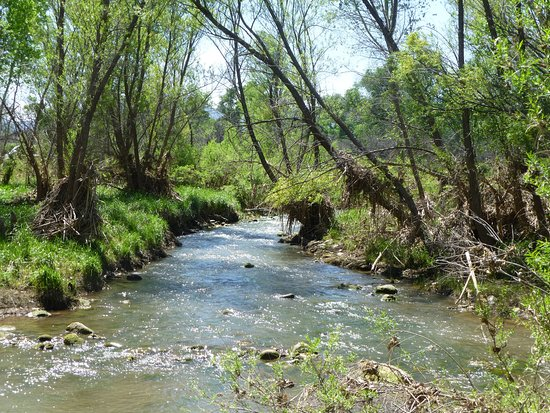 Cottonwood, AZ: The stream by the cabins