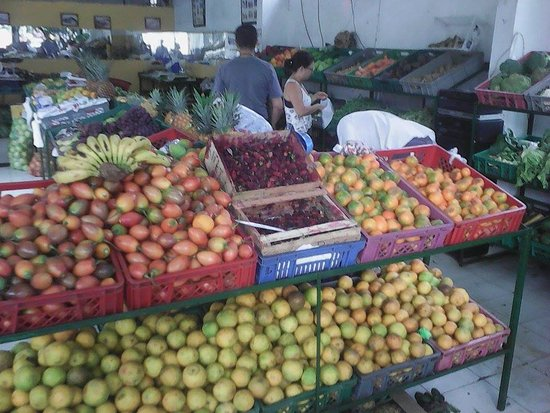 Plaza de Mercado: great fruits of all sorts at country prices