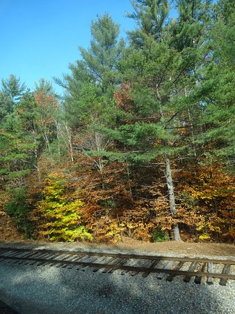 Conway Scenic Railroad: view from the train of tracks that led to Portland