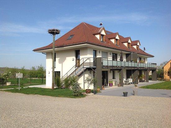 Maison d'Hote St Hune