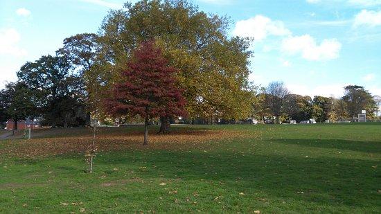 Phear Park