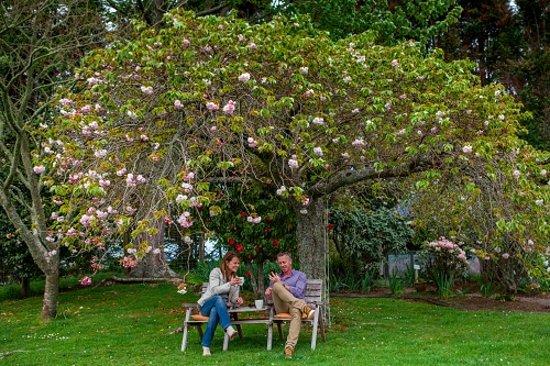 Clover Downs Homestead: The gardens offer many little secret spots