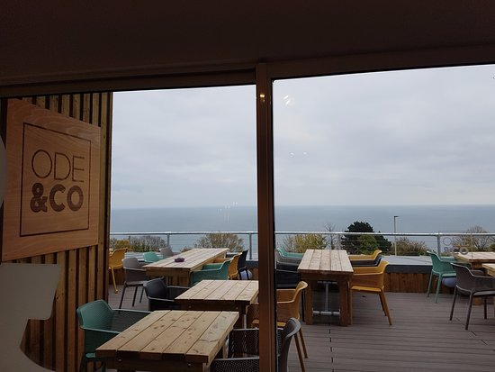 Shaldon, UK: View over the terrace from inside... stunning!